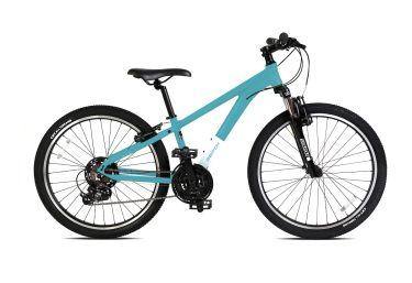 "The Youth 24"" Mountain Bike"